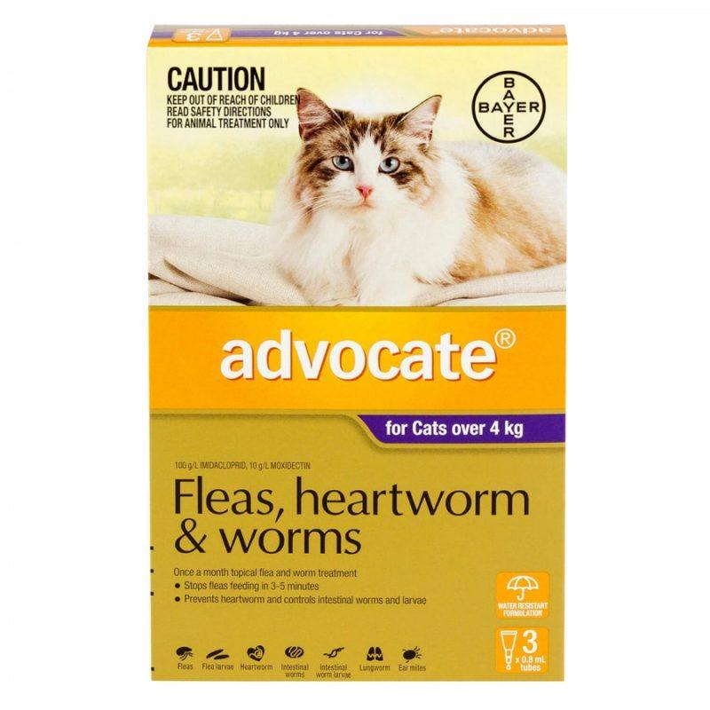 アドボケート猫4kg以上用