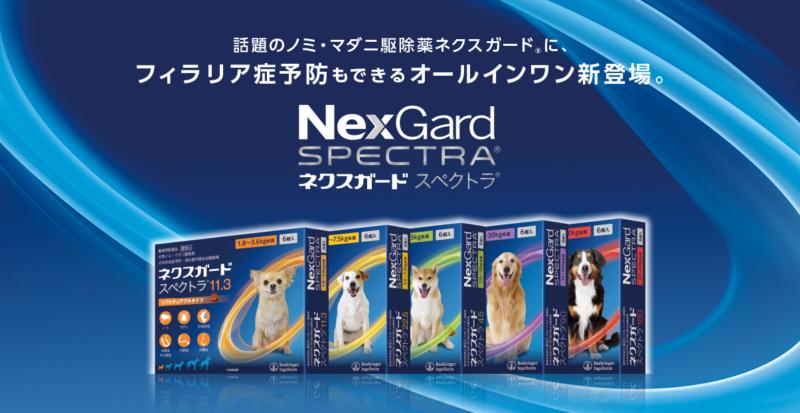 ネクスガードスぺクトラは人気No.1オールインワンペット医薬品です