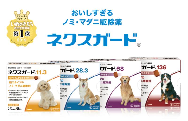 ネクスガードは国内人気No.1犬ノミ・マダニ駆除薬です
