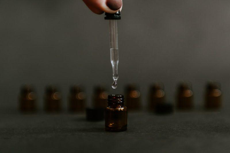 フィラリア予防薬の通年投与の注意点