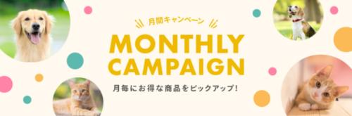 月間キャンペーン